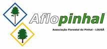 Aflopinhal2